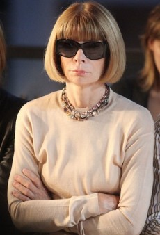 Possible Consequences of an Anna Wintour UK or French Ambassadorship