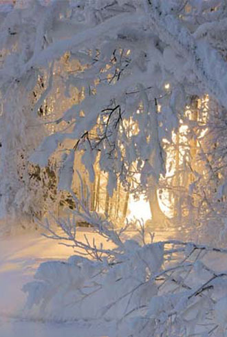 file_177933_0_pinteresting-winter