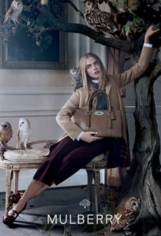 Cara Delevingne Stars in Mulberry's Fall 2013 Ad Campaign (Forum Buzz)