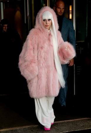 fur trade story portrait