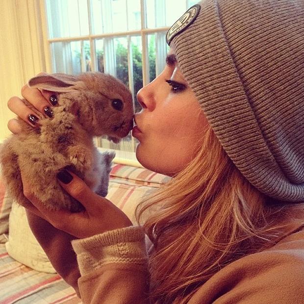 cecil cara delevingne bunny