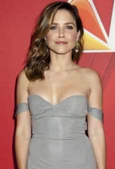 Sophia Bush Stylishly Repurposes the Straps on Her Gray Cushnie et Ochs Dress