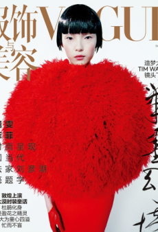 Vogue China's December Covers Are a 'Gorgeous Way' to End the Year (Forum Buzz)