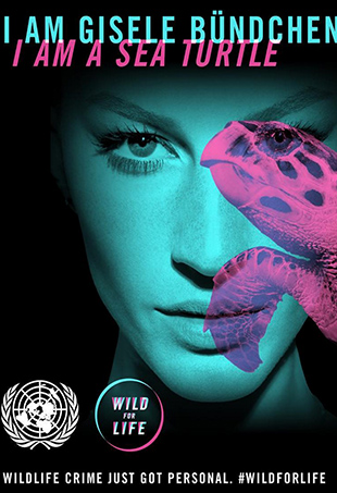 Gisele Bündchen is lending her star-power to the United Nation's Wild for Life campaign, which seeks to end illegal animal trafficking.