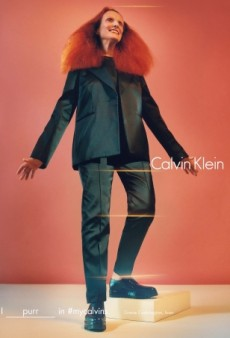 Grace Coddington, Kate Moss, Bella Hadid and More Star in Calvin Klein's New Campaign (Forum Buzz)