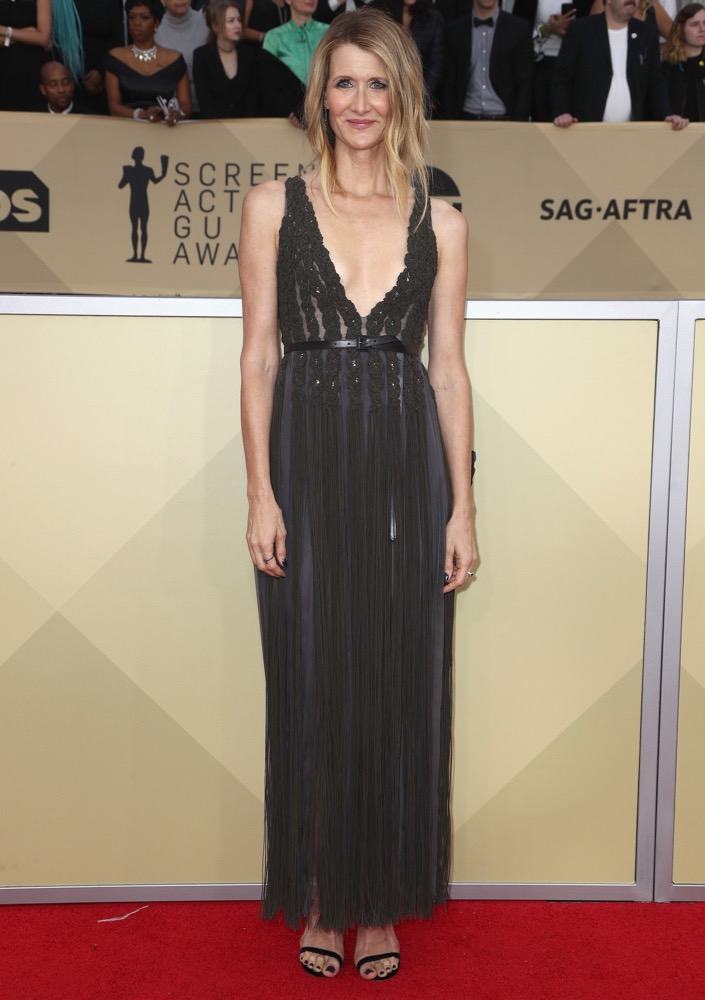 Laura Dern  All the Glitz and Glamour From the 2018 SAG Awards Red Carpet Laura Dern 2018 SAG Awards
