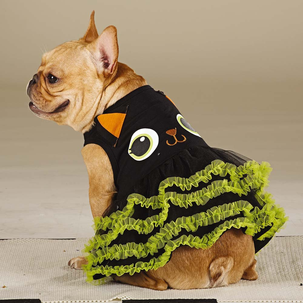 Cat Dog the Ultimate Costume & 47 Halloween Costumes for Your Dog - theFashionSpot