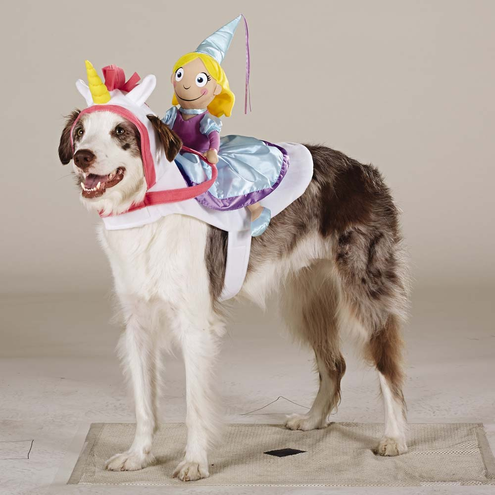 Princess Rider & 47 Halloween Costumes for Your Dog - theFashionSpot