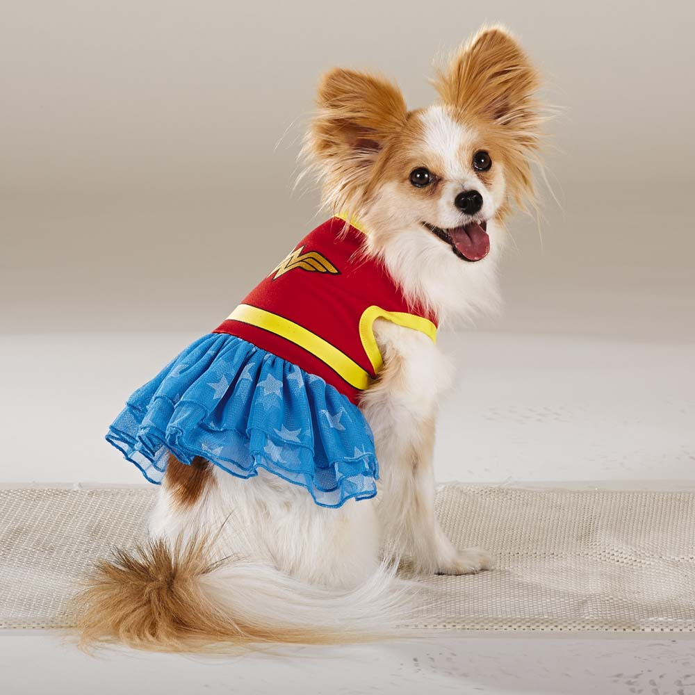 Wonder Woman : cat woman dog costume  - Germanpascual.Com