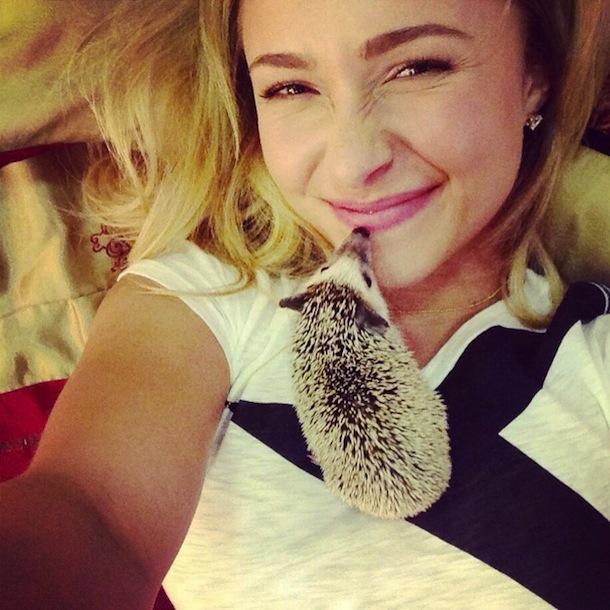 Hayden Panittiere's Thorny Friend
