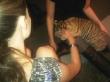 Emmy Rossum is a Tiger Tamer