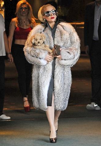 Lady Gaga Cruella