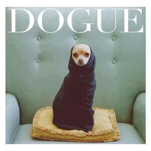 Baby Love Logo: Dogue: Vogue Is Going To The Dogs, In The Good Way
